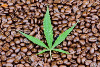 substance-shutter306909455-weed-coffee
